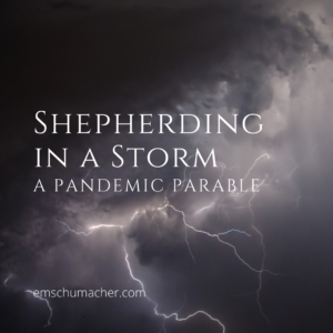 shepherding in a storm: a pandemic parable