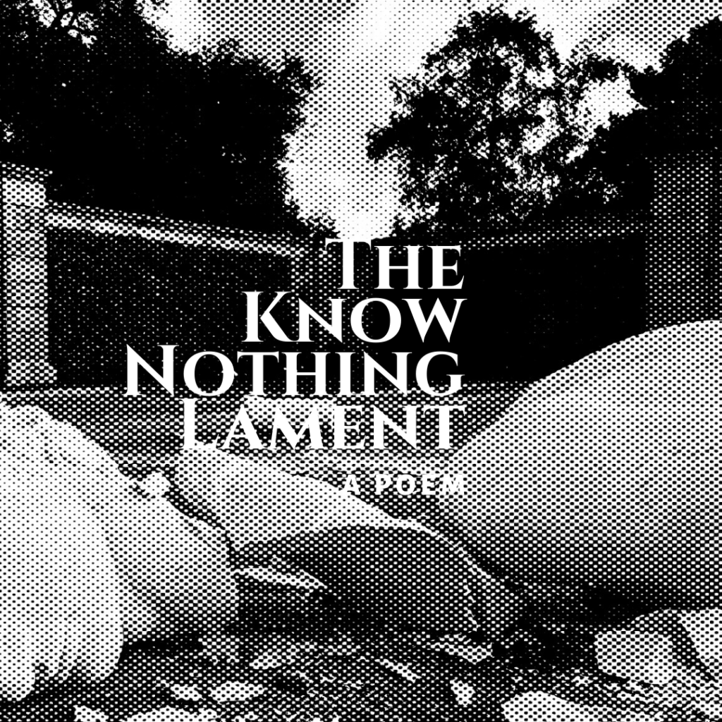 The Know Nothing Lament a poem