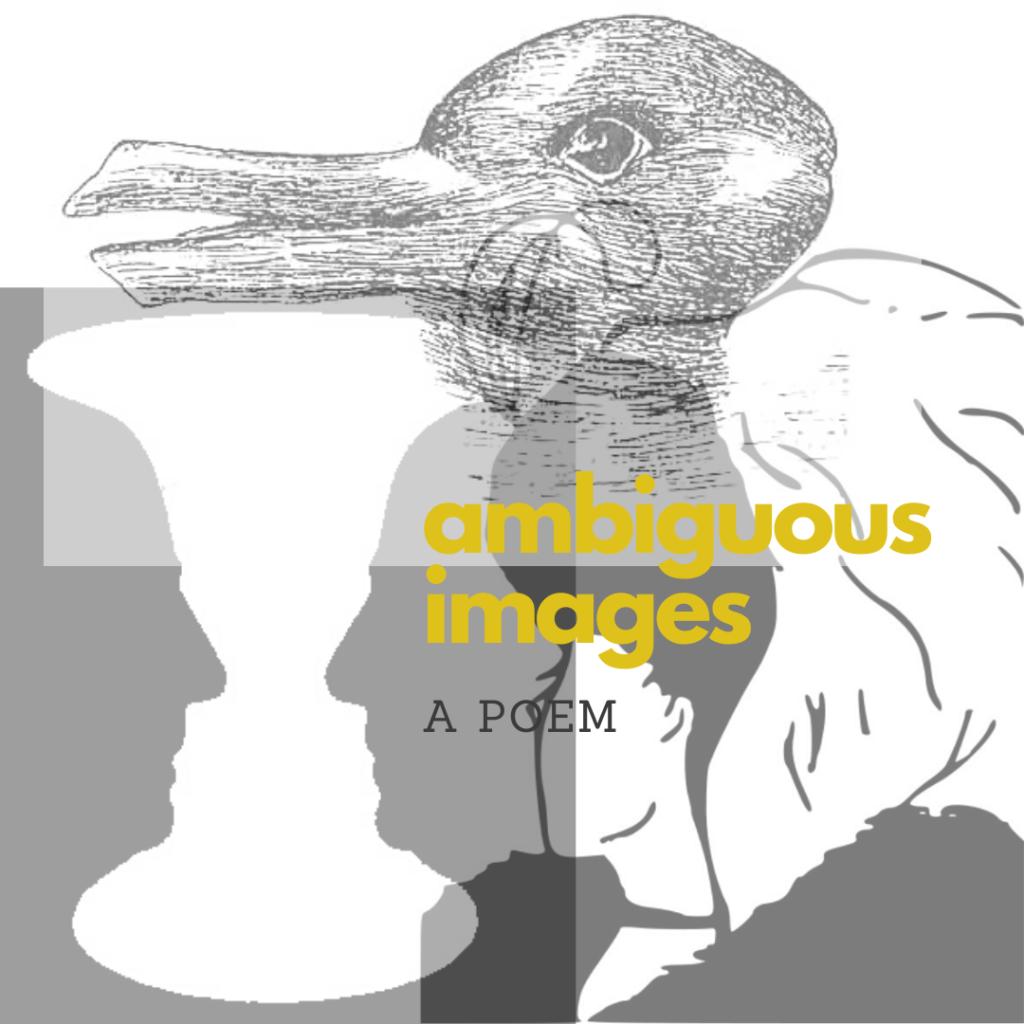ambiguous images poem eric schumacher