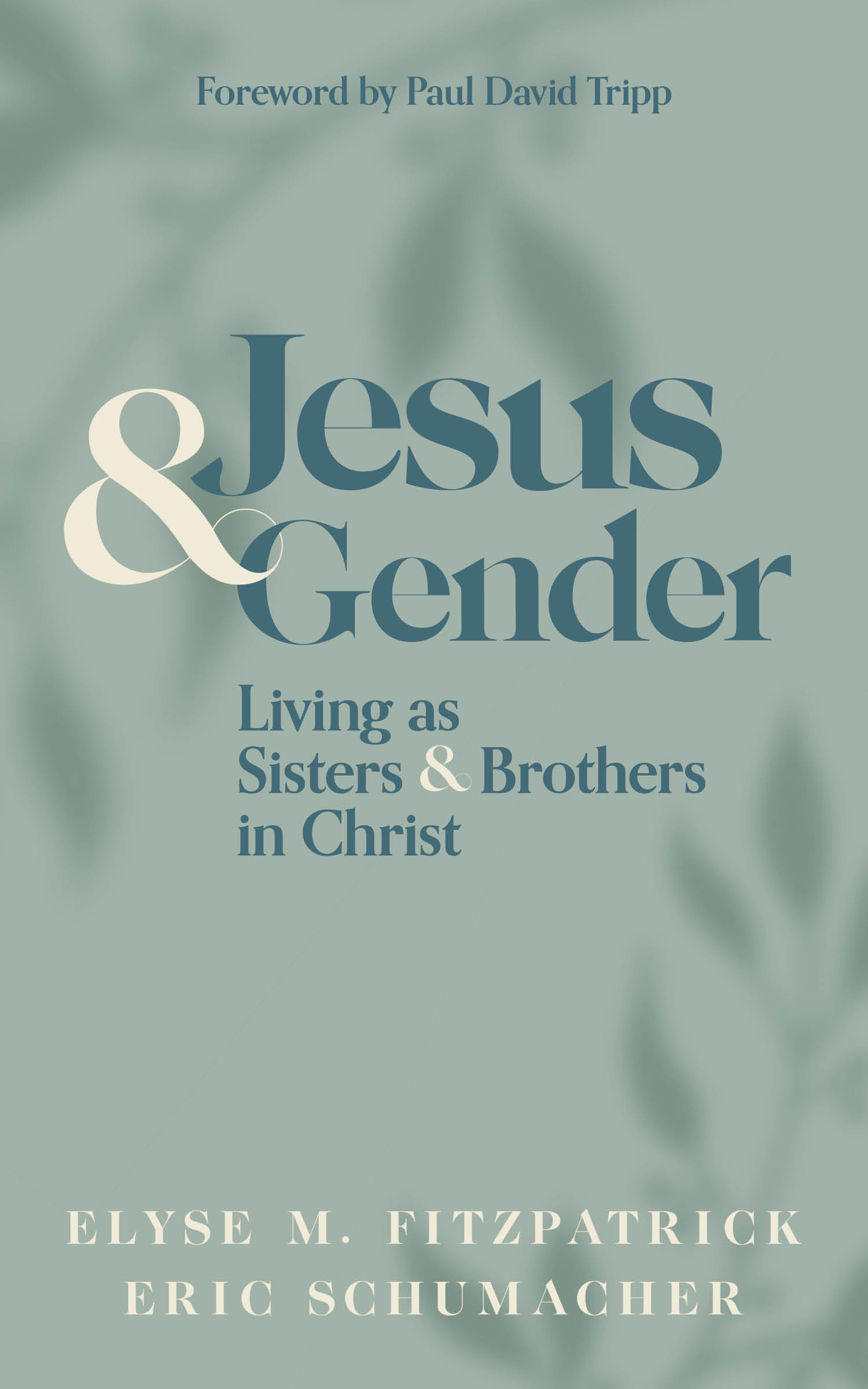 """cover of """"Jesus & Gender: Living as Sisters & Brothers in Christ"""""""